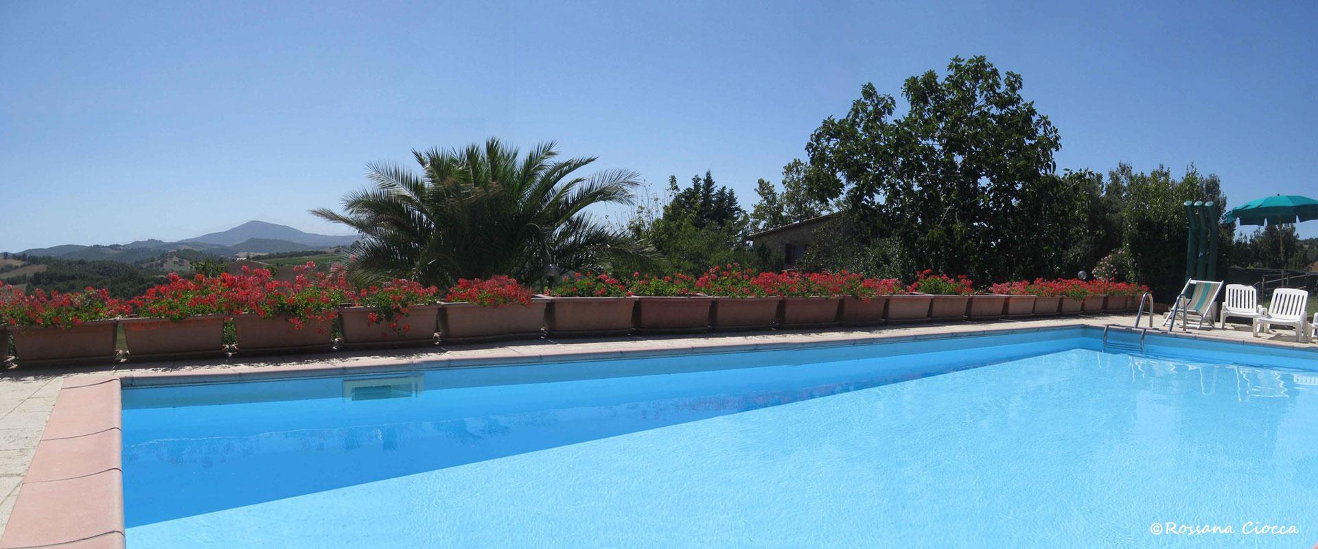 5_il_poderino_piscina